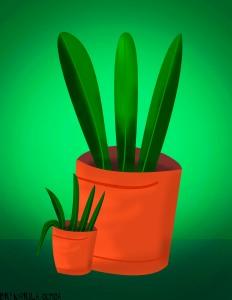 plantasdelaamistad
