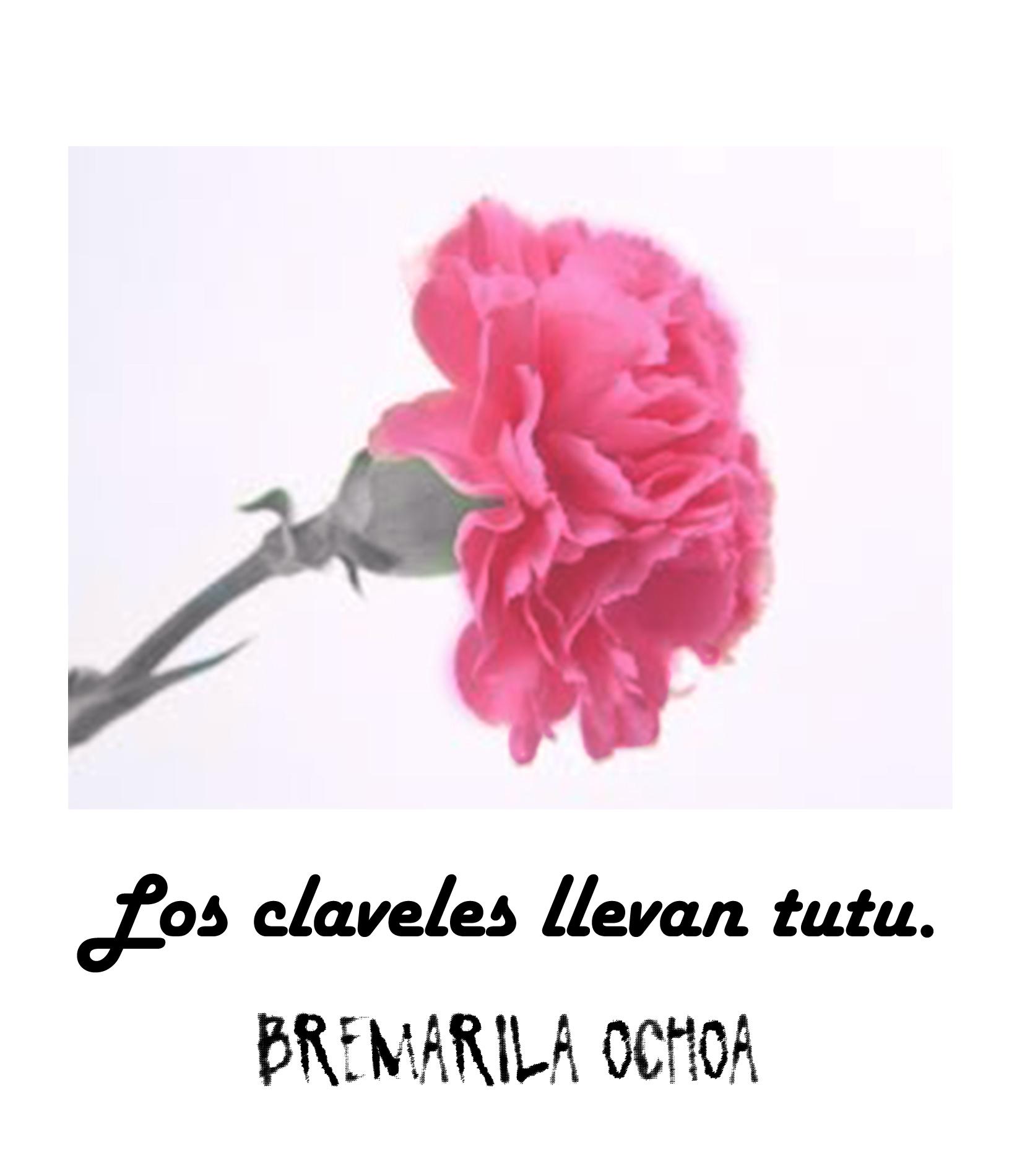 Clavel Bremarila Ochoa